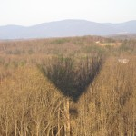 """Hot Air Balloon Shadow"", Charlottesville, Virginia, April 2010"